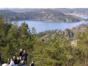 Utsikt från Hjortekullen